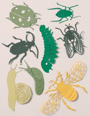 Insecten GG
